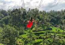 jungle-swing-bali